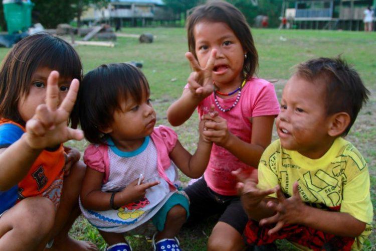 Amazzonia: partita la raccolta fondi